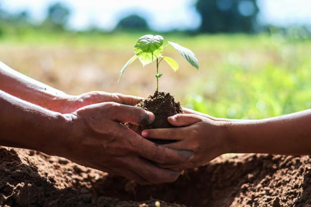 pai-e-filhos-ajudam-a-plantar-arvores-para-ajudar-a-reduzir-o-aquecimento-global_34152-278