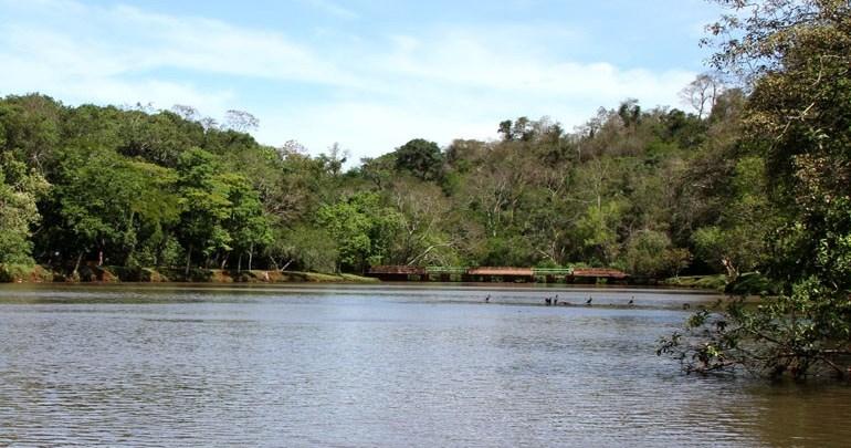 parque-arthur-thoomas-arquivo-p